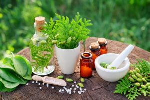 Homeopathic Medicine in Litchfield, CT